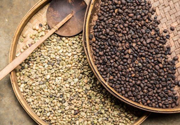 Café, 15 Super alimentos
