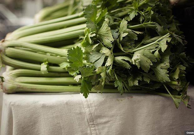 Apio, Alimentos con beneficios sorprendentes para la salud