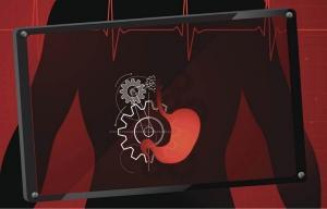 Ilustración del sistema digestivo humano -  Cómo cuidar la vesícula y evitar los cálculos biliares - Dr. Elmer Huerta