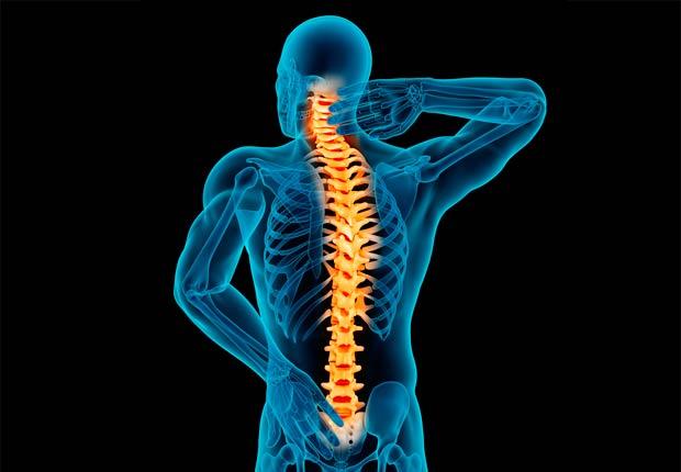 Ilustración de la columna vertebral - ¿Qué pasa con nuestro cuerpo cuando nos sentamos durante casi ocho horas al día?