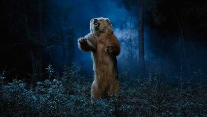 Ataque de un oso - Guía de supervivencia