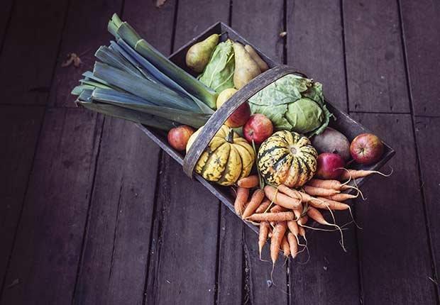Canasta llena de vegetales - Números que pueden extender tu vida