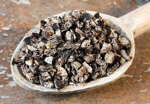 Cucharón de madera con cohosh negro - Hierbas y especias podrían equilibrar las hormonas