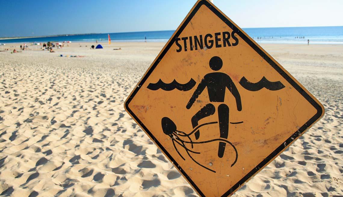 Jellyfish warning sign, Summer Survival Guide, Jellyfish Beach