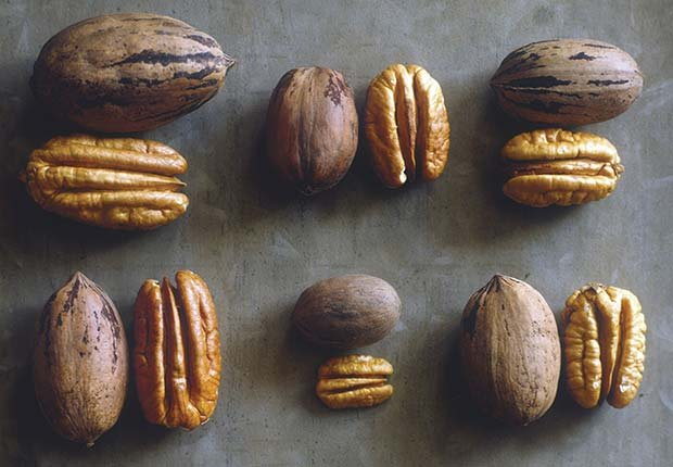 Diferentes tipos de nueces