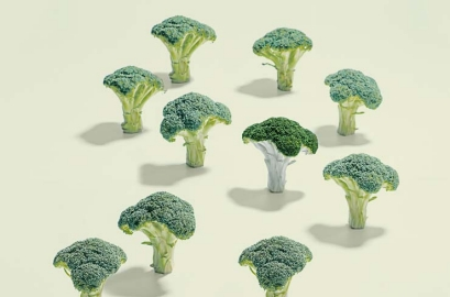 Broccoli, Foods That Help Eye Health