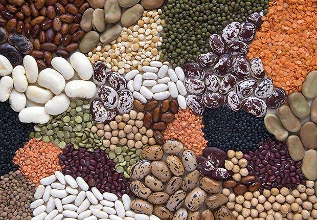 Diferentes granos - frijoles