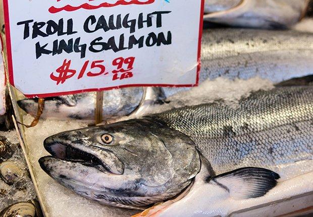 Salmón fresco, pescado en mar abierto