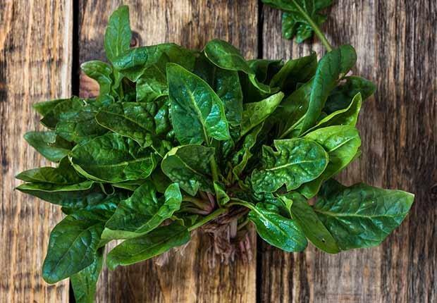 Alimentos ricos en magnesio - Espinacas