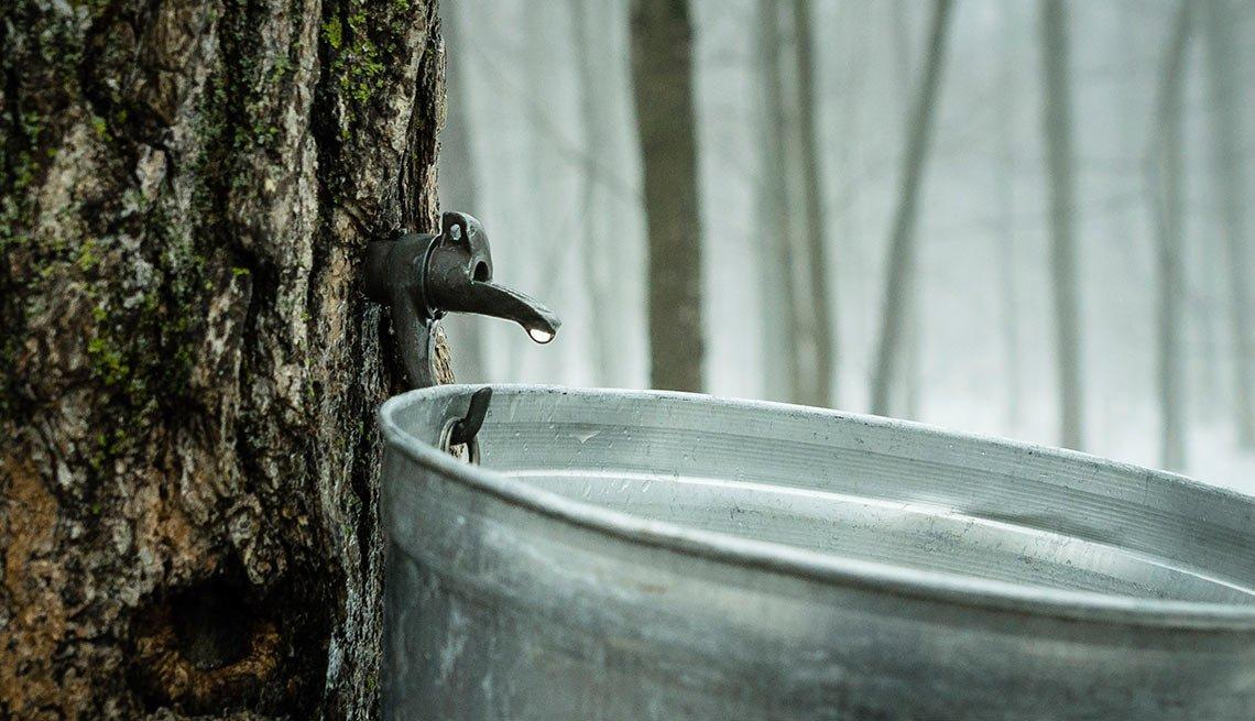 item 4 of Gallery image - Agua de arce - Alimentos raros pero nutritivos