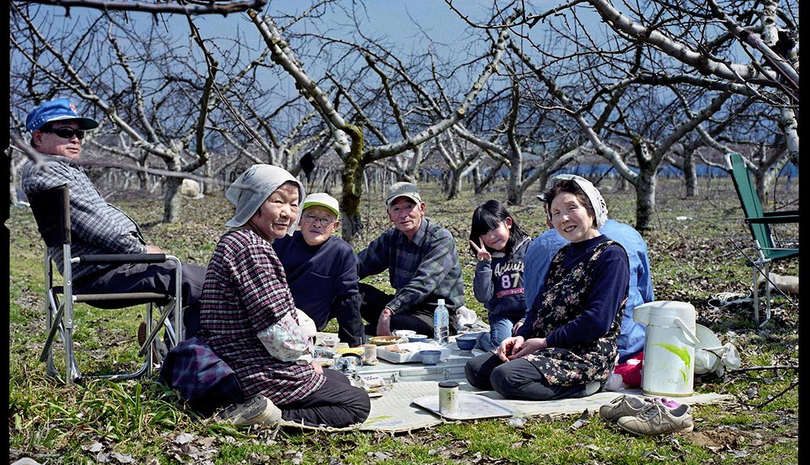 Familia japonesa de picnic