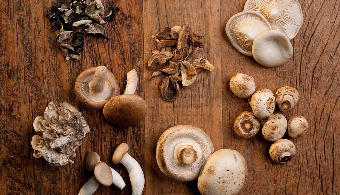 Distintas clases de hongos