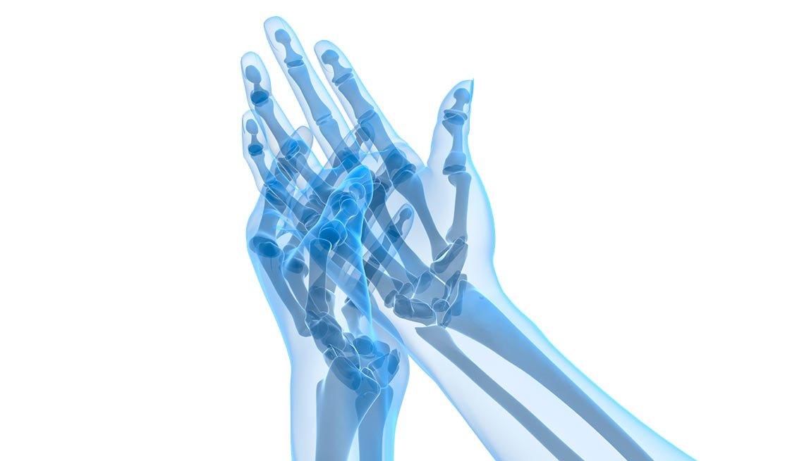 Estructura ósea de las manos
