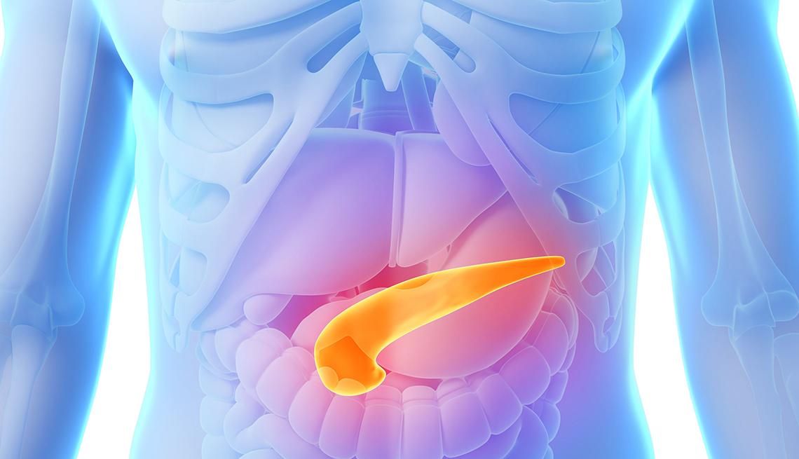 Gráfico del páncreas