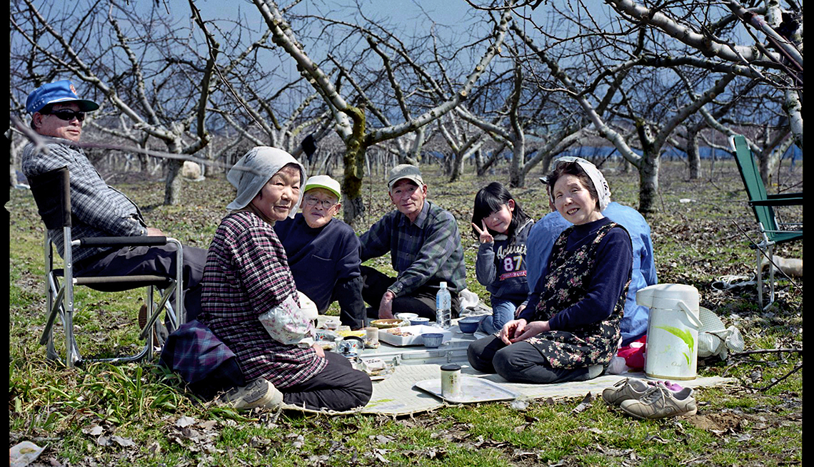 Pruning apple trees in Nagono, Longest Living place on Earth