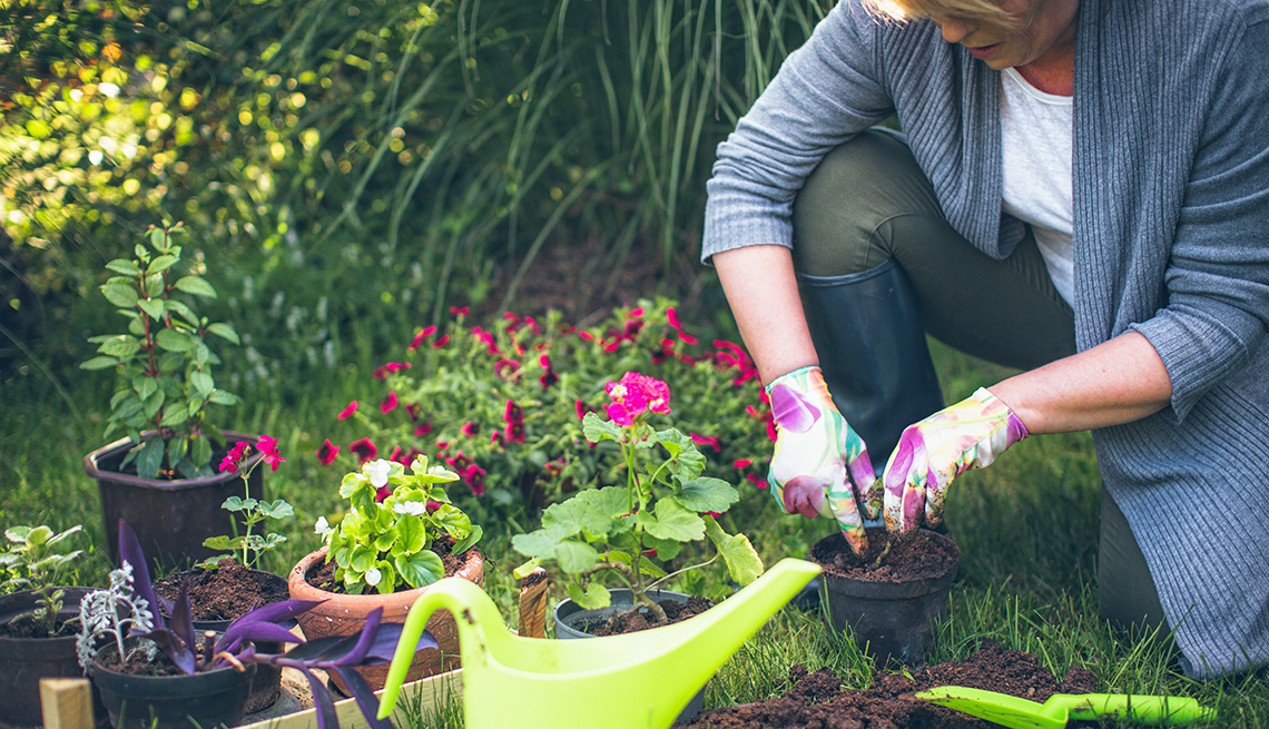 5 Ways Gardening Benefits Health