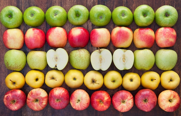 Filas de manzanas verdes, rojas y amarillas