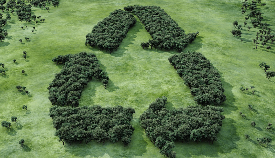 Símbolo de reciclaje hecho con arbustos en un campo natural.