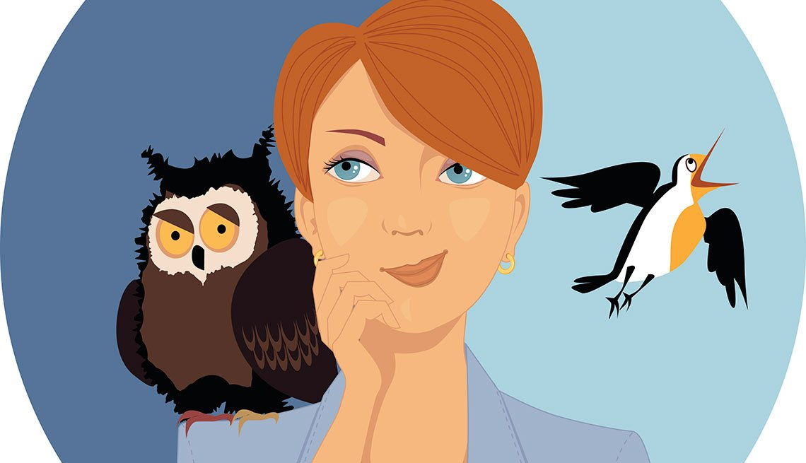 Portrait of a pensive woman, an owl and a lark on her shoulders, EPS 8 vector illustration