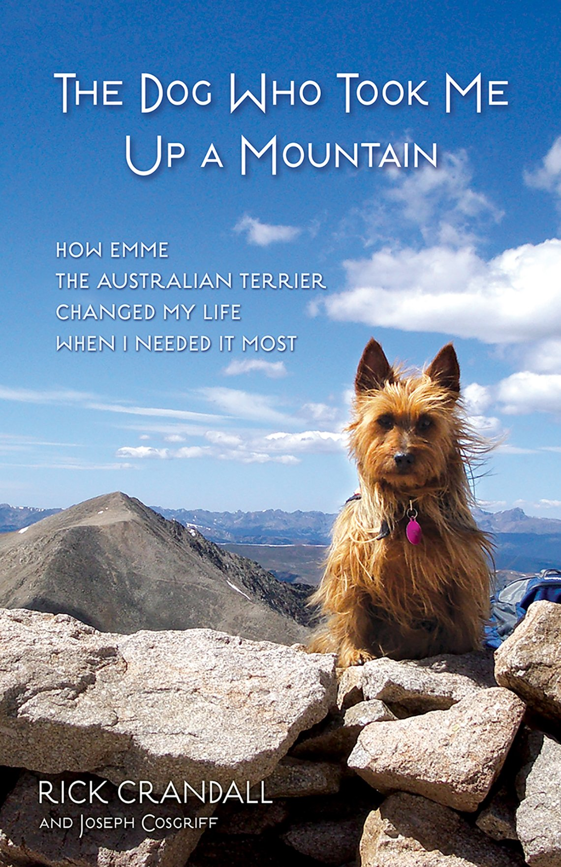The book cover for 'The Dog Who Took Me Up a Mountain