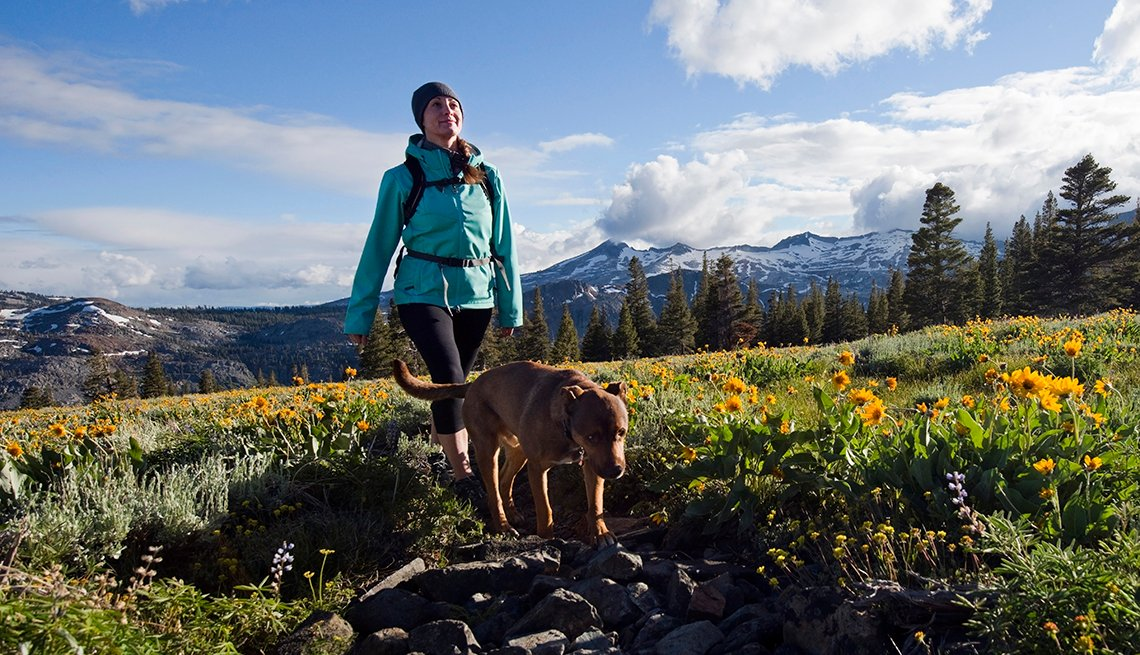 A woman hikes with her dog through a field of wildflowers in Desolation Wilderness with the Crystal Range in the background near South Lake Tahoe, California