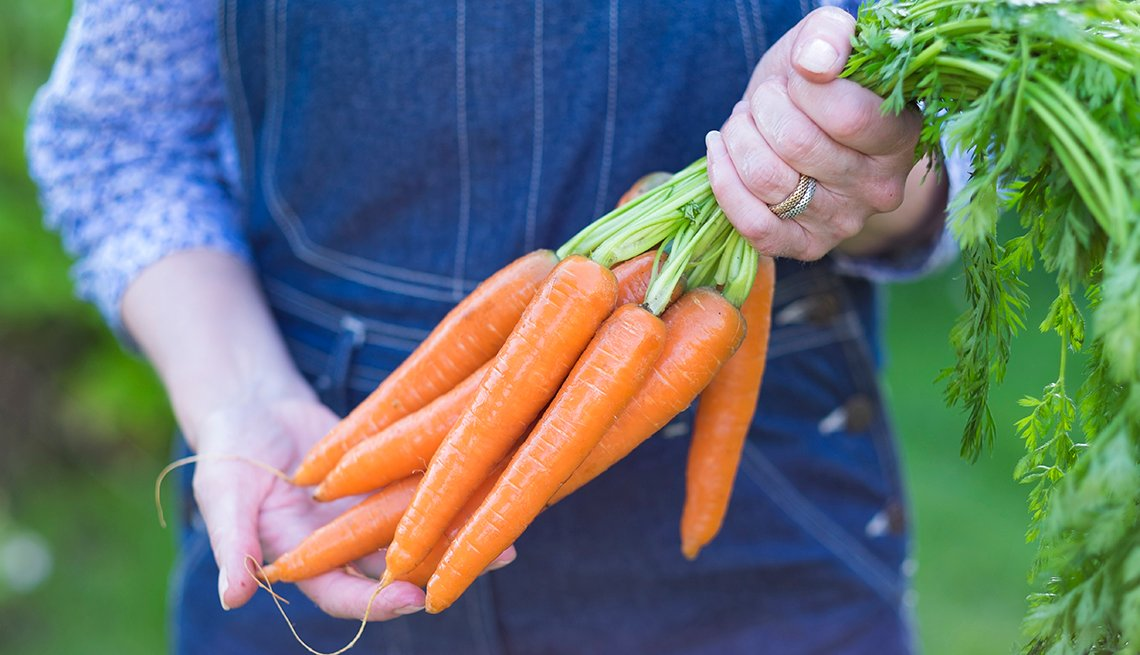 Close-up of woman's hands holding a bundle of carrots by the green stems in her garden.