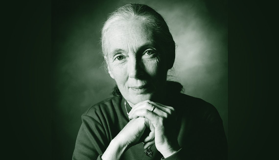 portrait of jane goodall