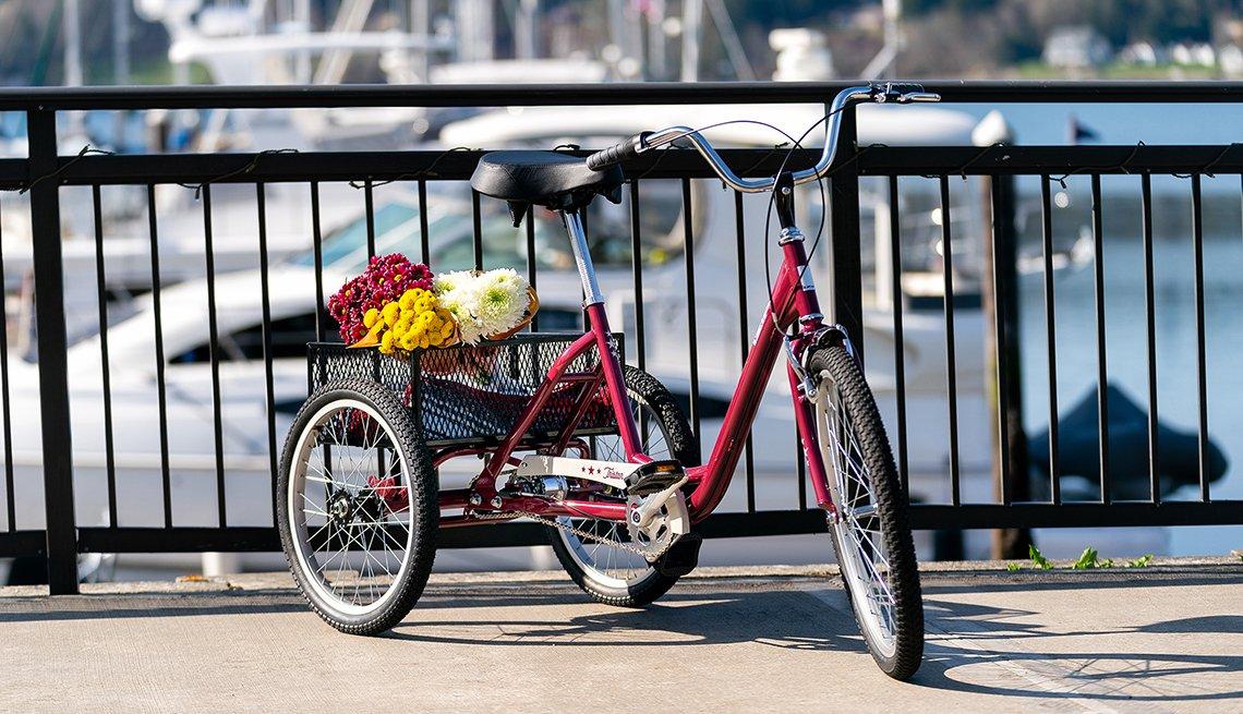 item 2 of Gallery image - a red trike bike the tristar burg 3 wheel
