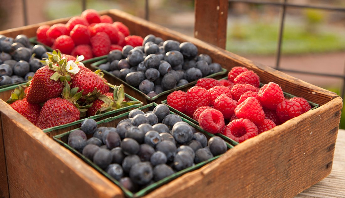fresh berries sitting in a crate on a farm