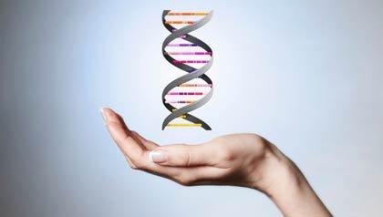 Mano y candena de DNA - Experimento clonacion humana - Embrion humano clonado