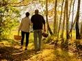 Pareja camina por el bosque - Cuidas de alguien y quieres formular tus propósitos