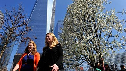 People walk past the Survivor Tree at the World Trade Center in New York.  For Prime Time Focus.