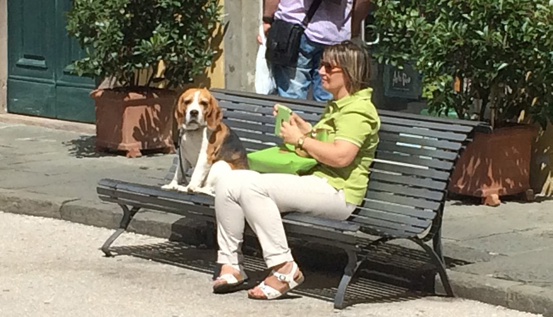 Woman Sits On Bench With Her Dog, AARP Home And Family, Get A Dog After 50