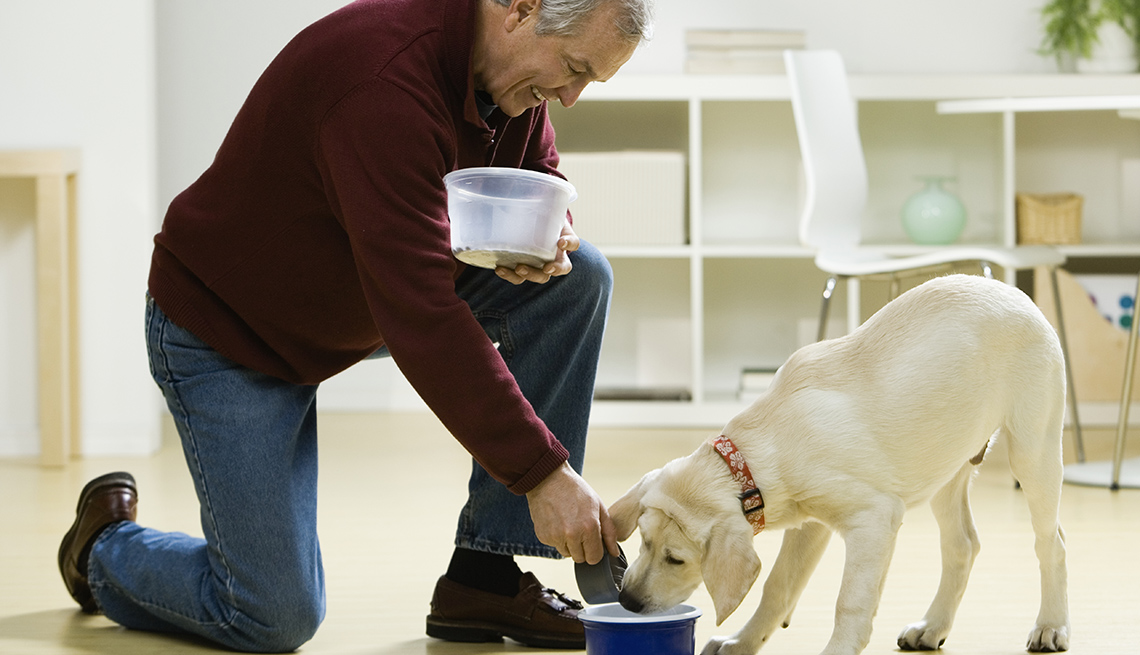 Man Feed's His Dog, AARP Home And Family, Get A Dog After 50