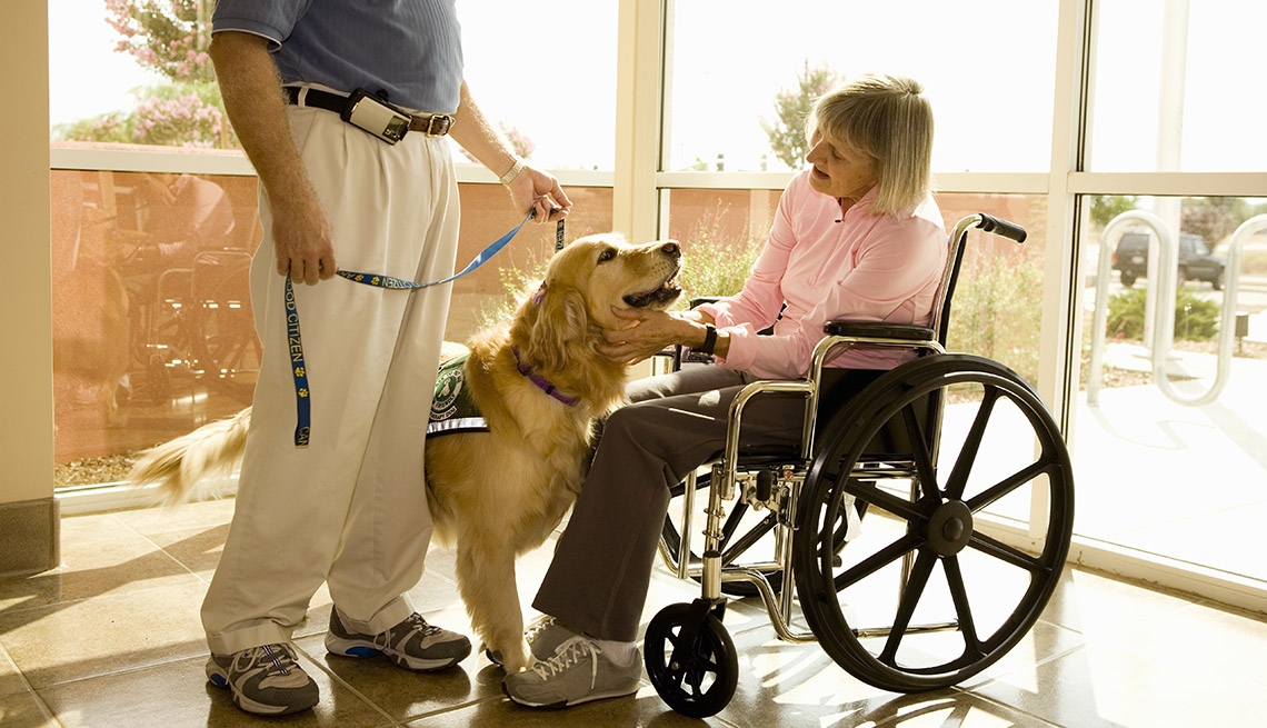 Woman Sits In Wheelchair, Therapy Dog On Leash, AARP Home And Family, Get A Dog After 50
