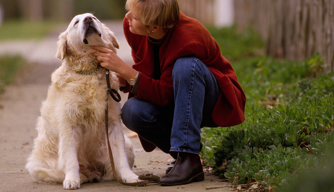 Dog Sits While His Owner Gives Him A Rub Outside, AARP Home And Family, Get A Dog After 50