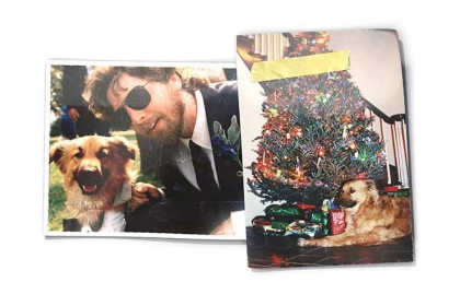 Forever Dog Aging Years Study Health Wedding Christmas