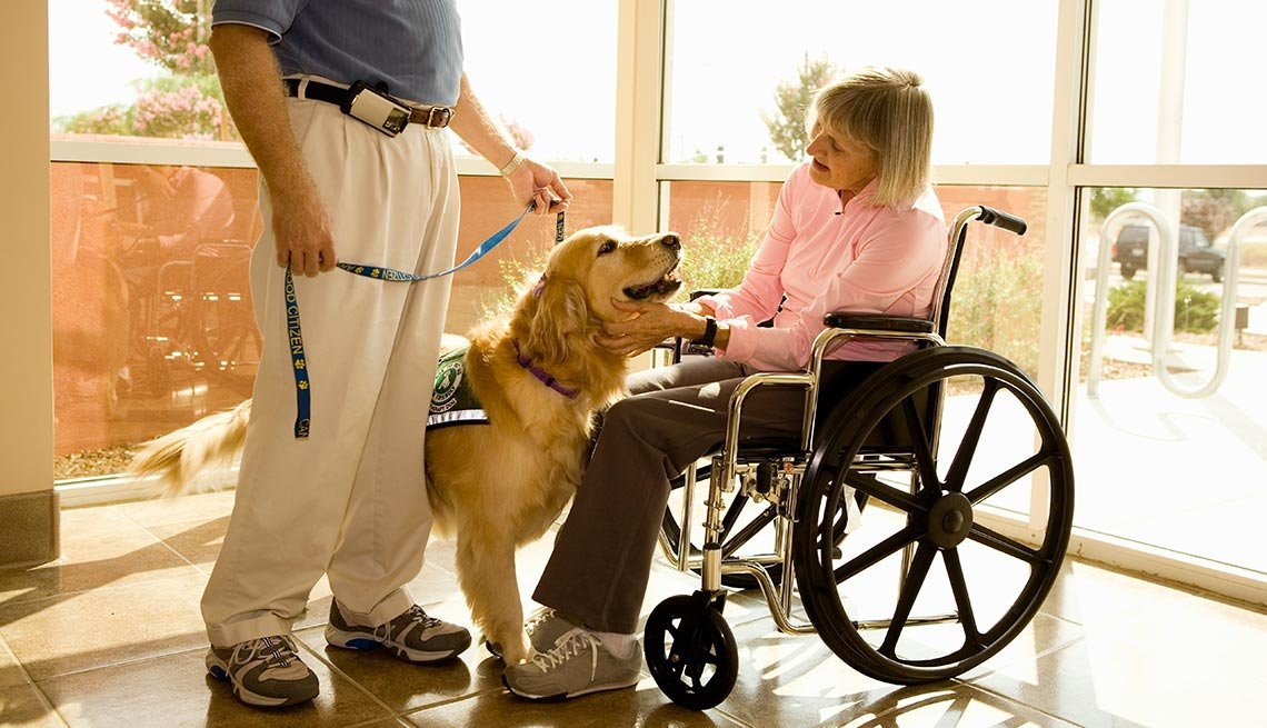 10 Health And Life Benefits Of Owning A Dog When Over 50