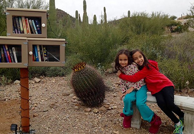 Livable Communities: Little Free Libraries