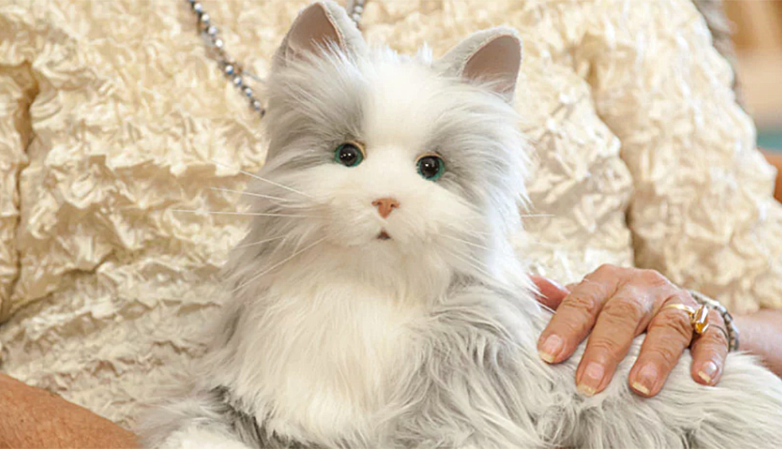 Robot Cat acts as a Companion to Older People