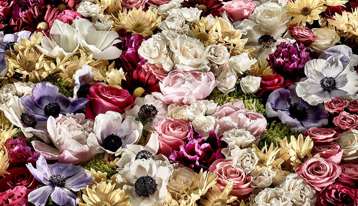 Variedad de flores y colores agrupadas
