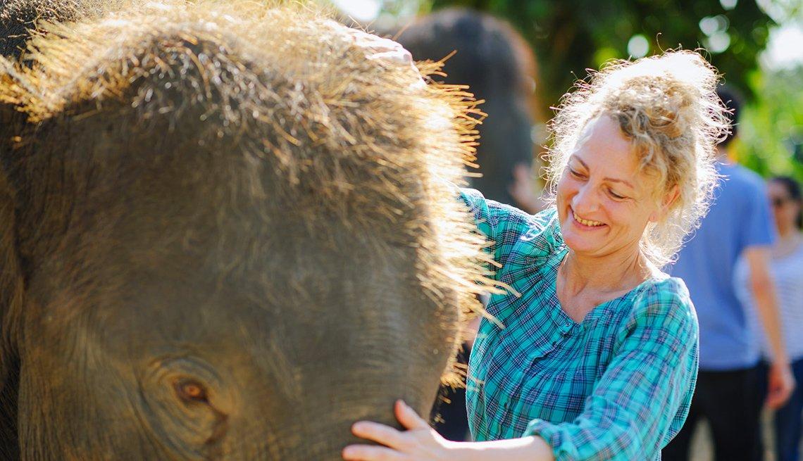 A woman pets a baby elephant
