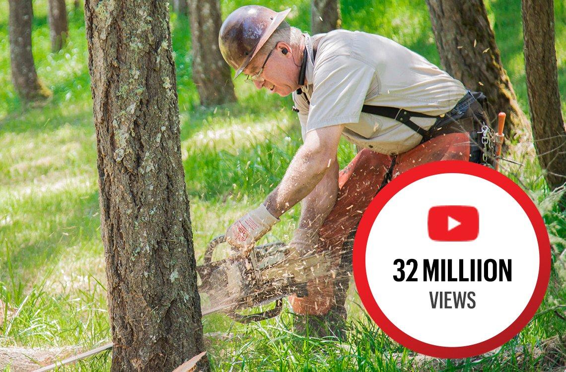 Scott Wadsworth cutting down a tree