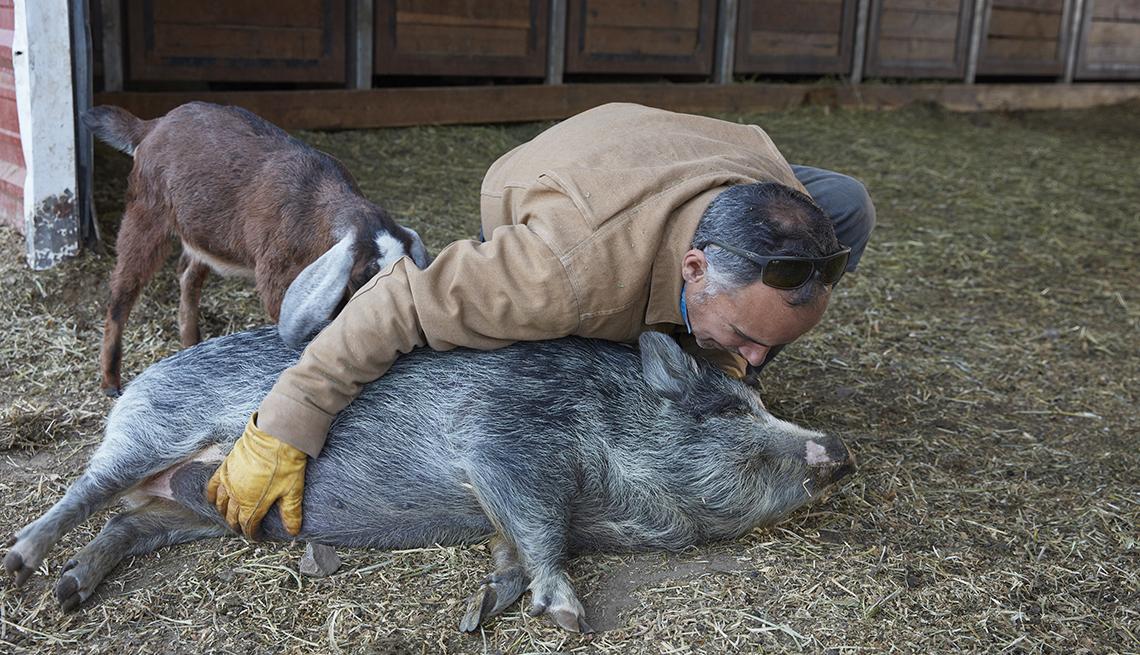 item 4 of Gallery image - Hombre juega con su cerdo mascota