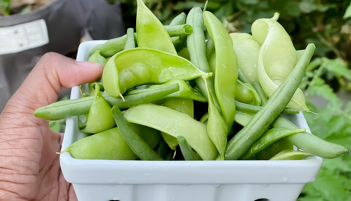 Freshly picked heirloom green peas and beans