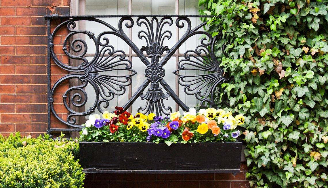 Maceta con flores en la parte exterior de una ventana