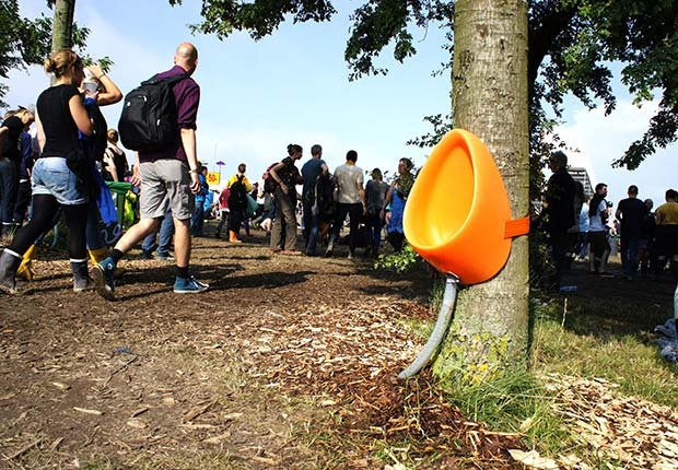 The P-Tree, a public toilet strapped to a tree trunk, in Roskilde, Denmark - toilets around the world