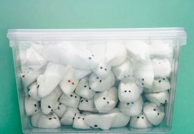 Caja transparente de plástico, 10 objetos útiles y asequibles para su hogar