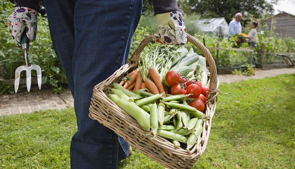 Accesorios para el jardín - Cristina Mella