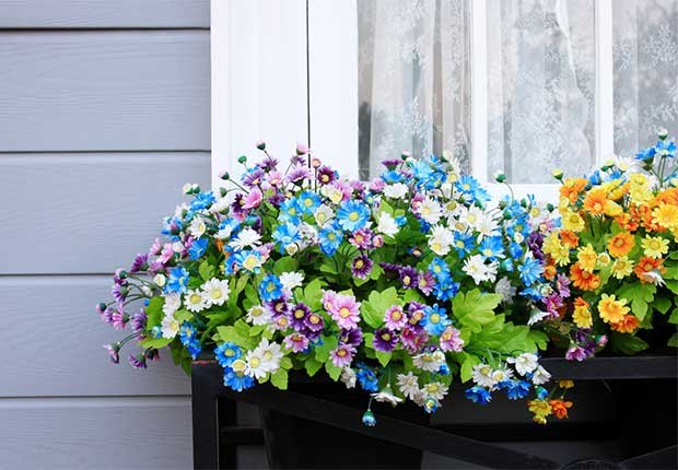 Colorful flowers in a window box, 10 Ways to Add a Curb Appeal to your Home